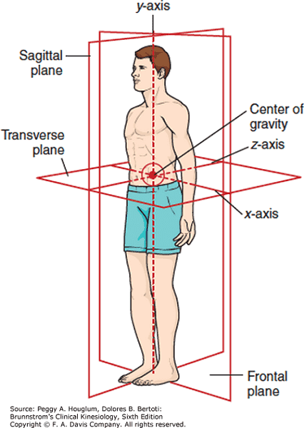 image of body axis stretching